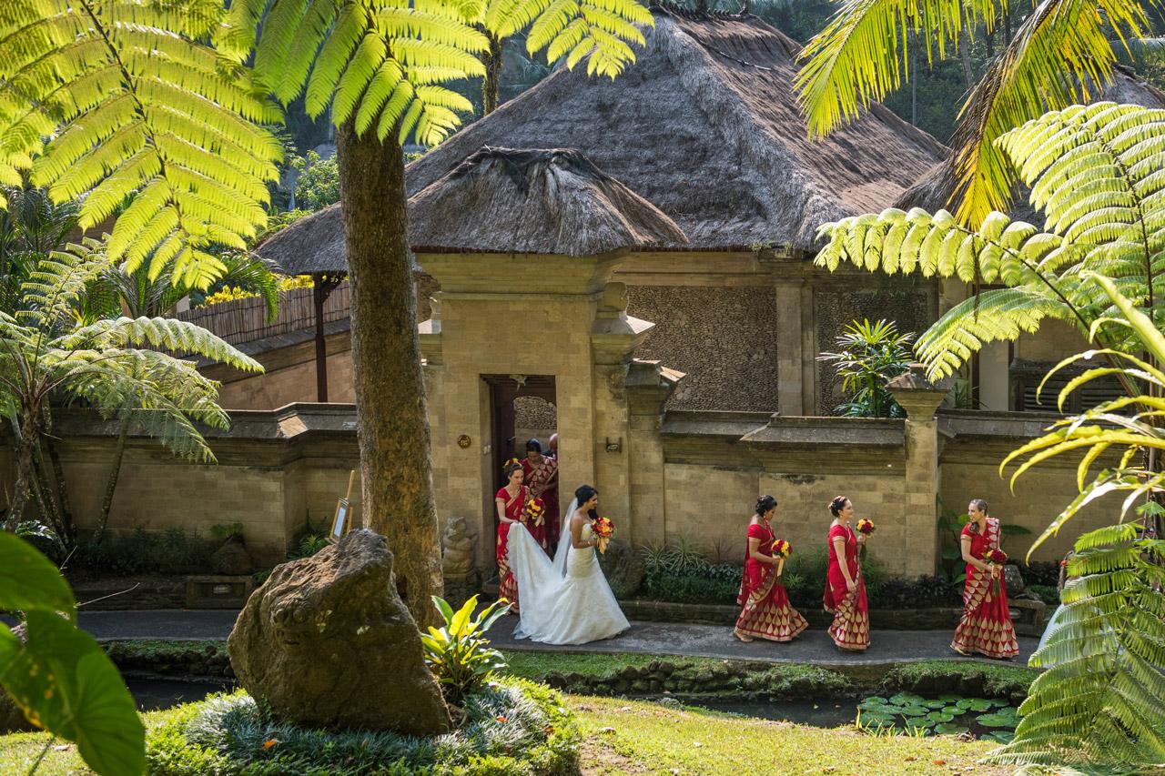 Royal Pita Maha Botanica