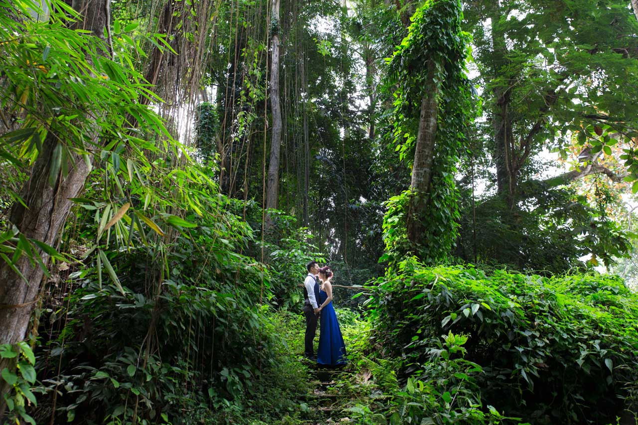 Good forest locations pre wedding Bali